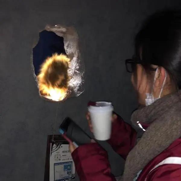 """上海职业能力培训_为残障人士提供平等的工作环境 """"熊爪咖啡""""成为网红背后的 ..."""
