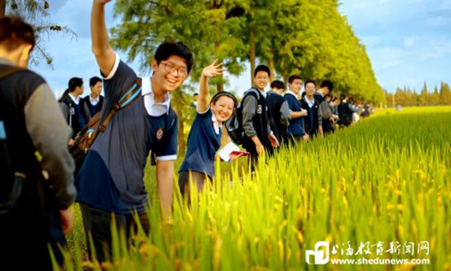 """松江中小学生如何开展劳动教育?在城市和田野间""""养""""""""正""""""""达""""人"""
